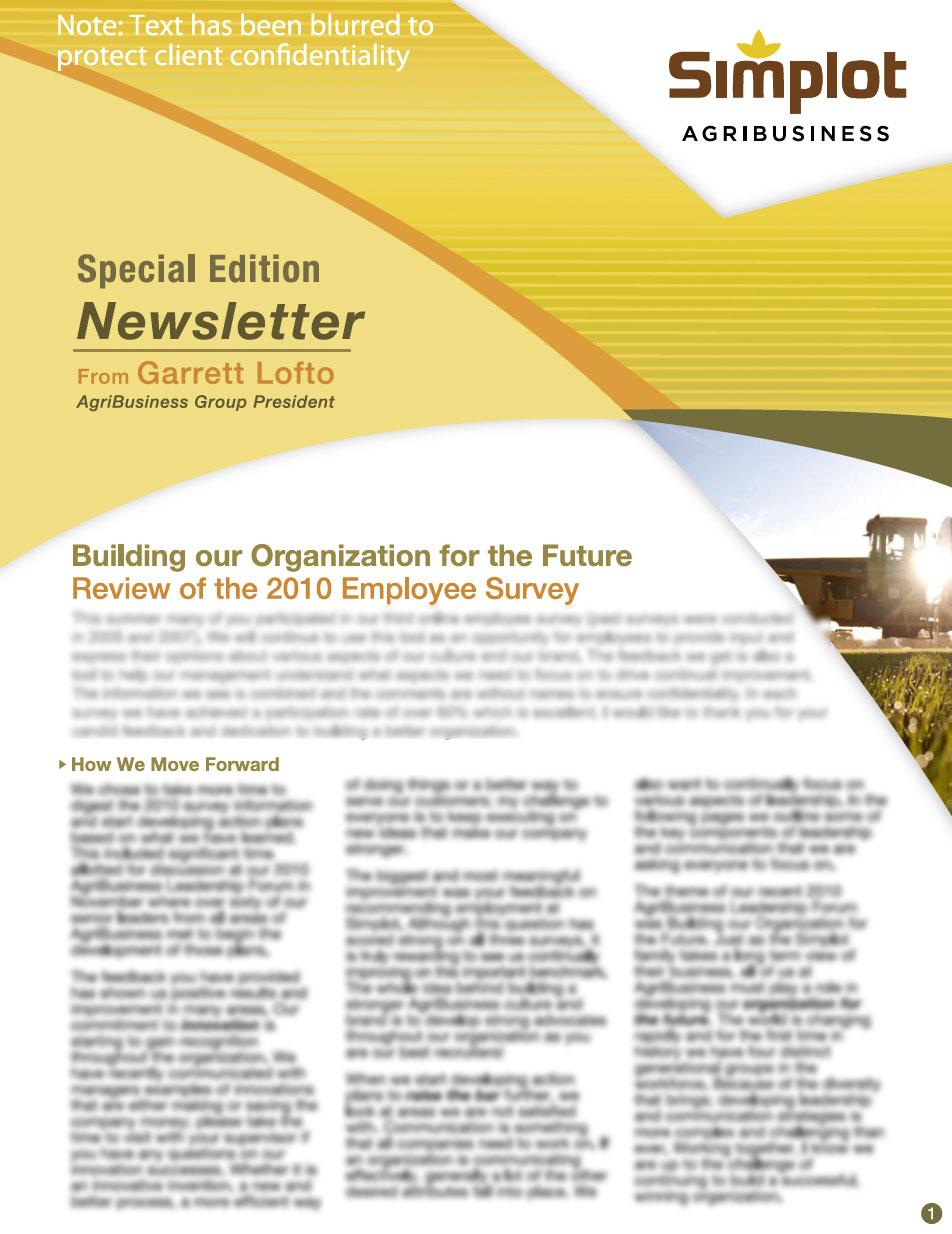corporate newsletter design - Khafre
